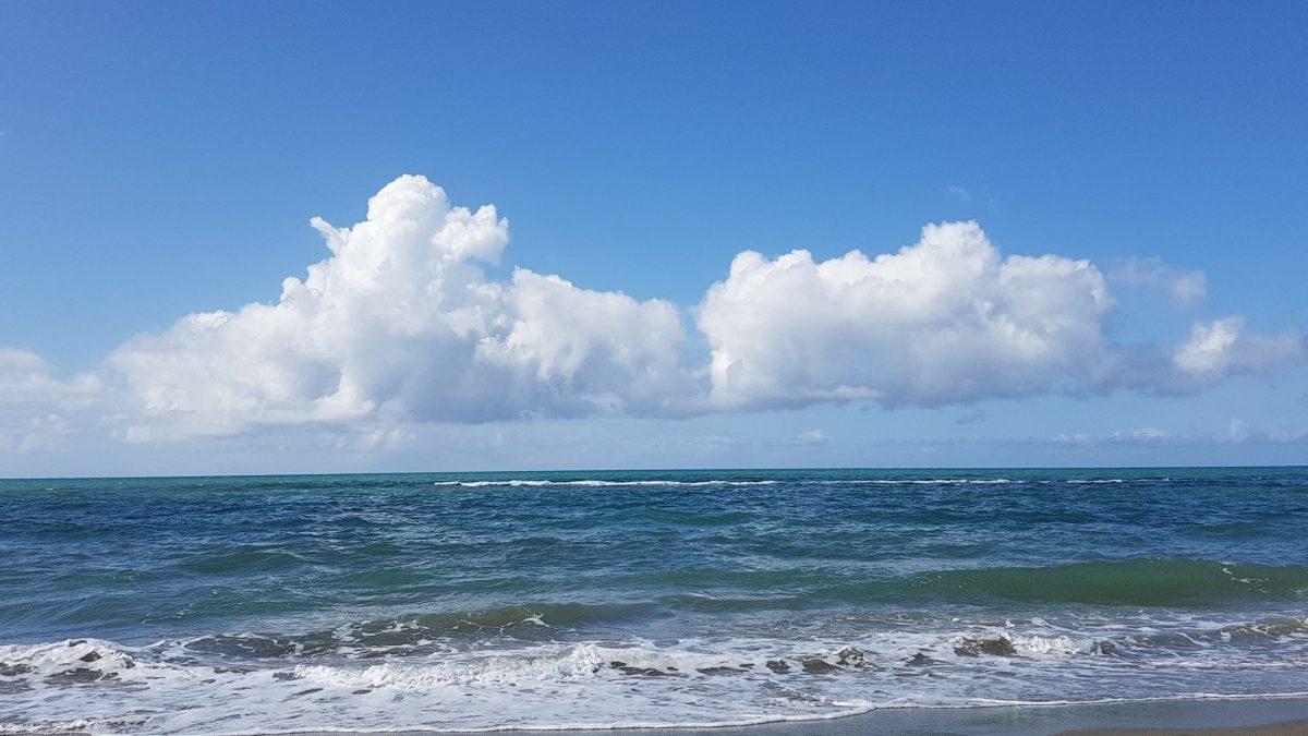 Piccola storia di un paniere a forma di nuvola.