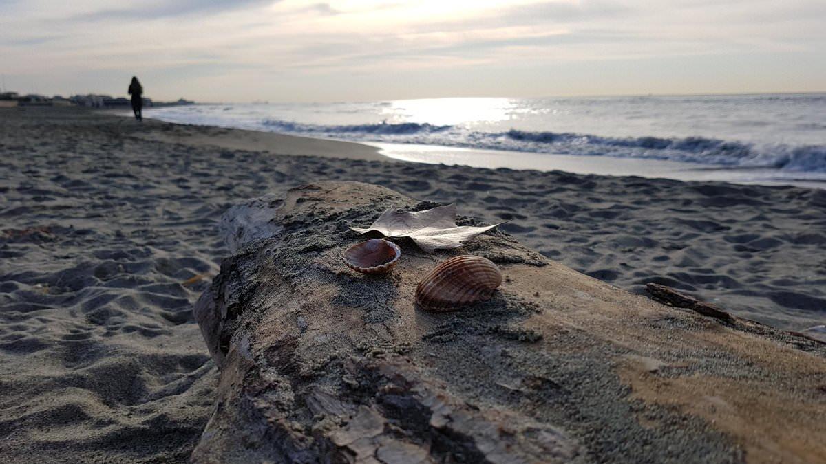 La spiaggia fotografata da Roberta Leonardi