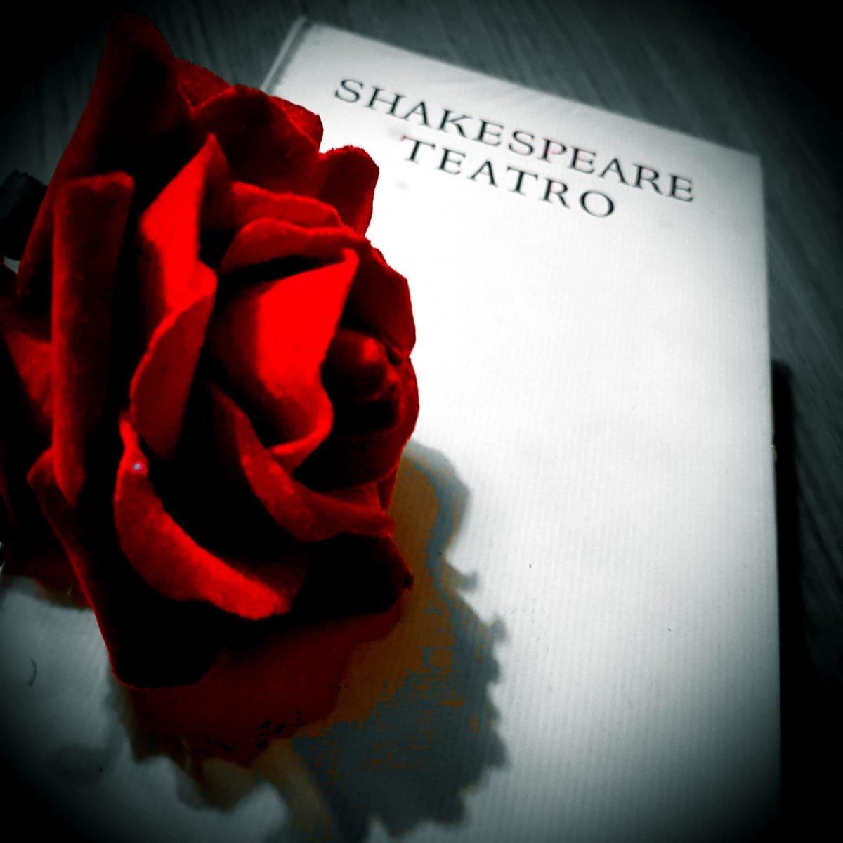 Teatro: dove i sogni iniziano e prendono forma.