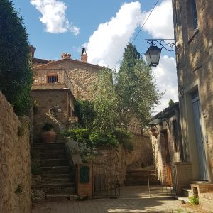 Read more about the article A spasso per la Val d'Orcia.