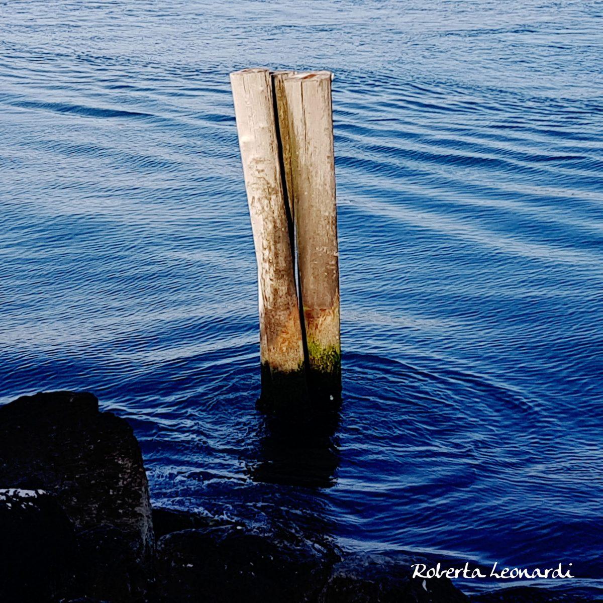 La memoria dell'acqua.
